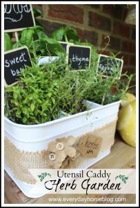 Creating a Mini Herb Garden