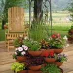 Creating a Container Herb Garden