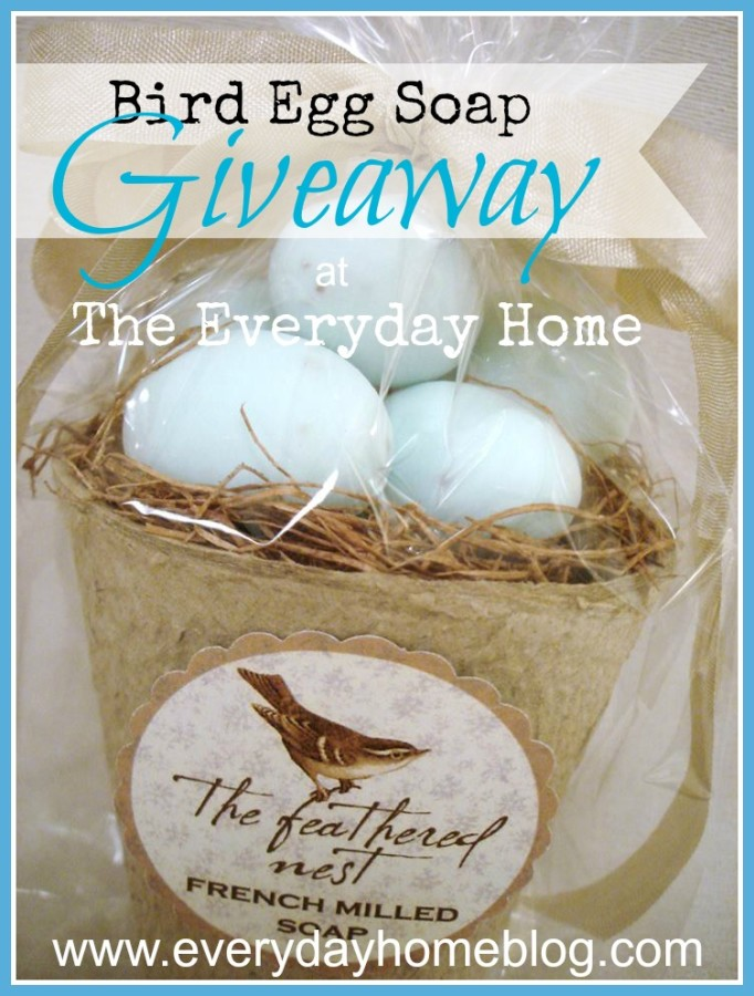 Egg Soap Giveaway at The Everyday Home
