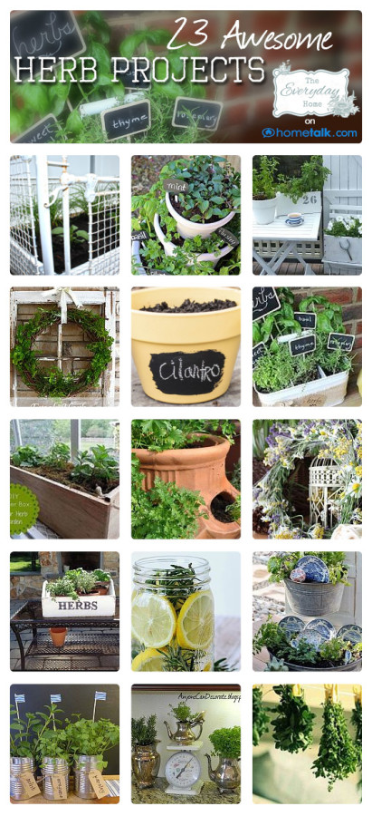 Great Uses for Herbs at The Everyday Home
