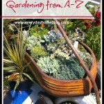 Gardening A-Z {sponsored by the letter C}