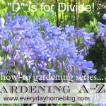 Gardening A-Z (The Letter D)