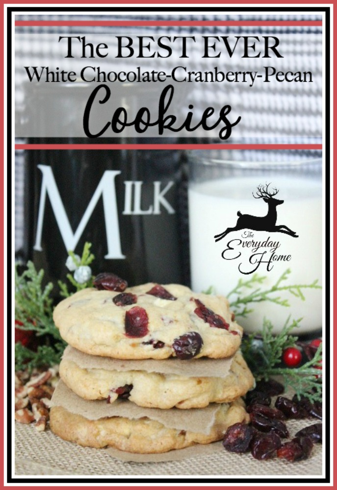 the-best-ever-white-chocolate-cranberry-pecan-cookies-the-everyday-home-www-everydayhomeblog-com