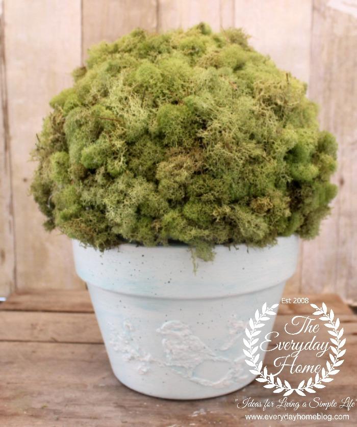 MOss-Pot-Moss-Full