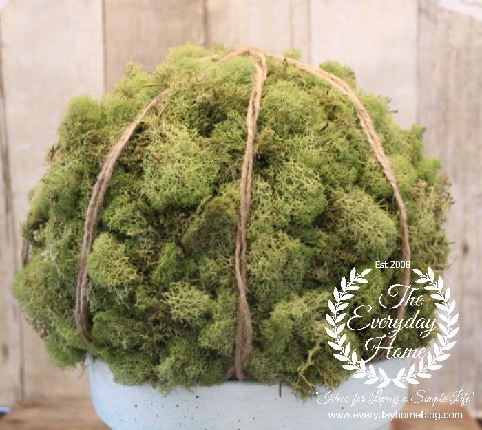 Moss-Ball-Jute