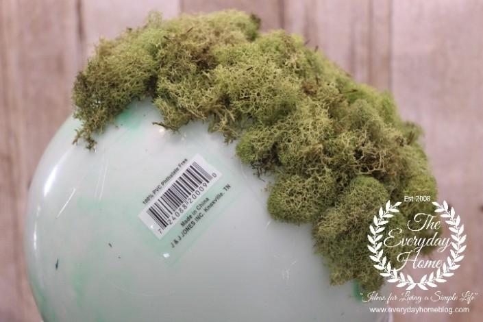 Moss-Pot-Partial-moss
