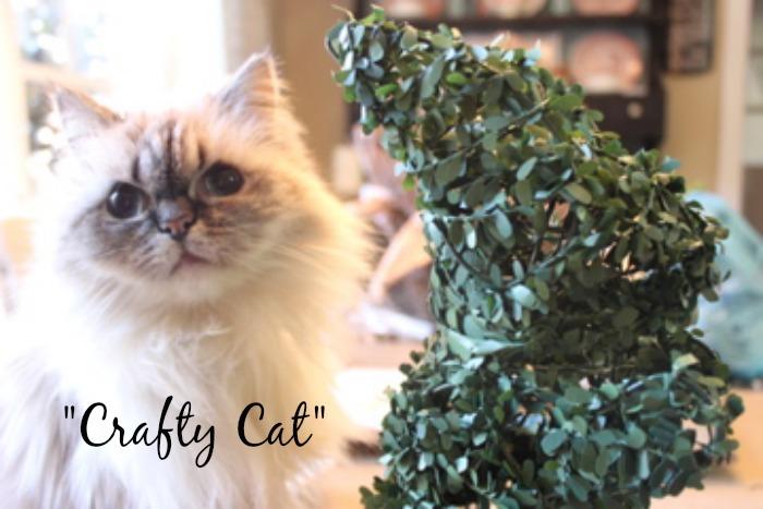 Bunny-Bars-Crafty-Cat