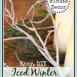 DIY Iced Winter Branches