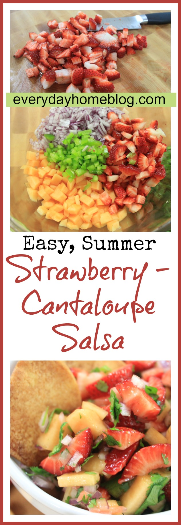 Strawberry-Cantaloupe Summer Salsa by The Everyday Home / www.evevrydayhomeblog.com