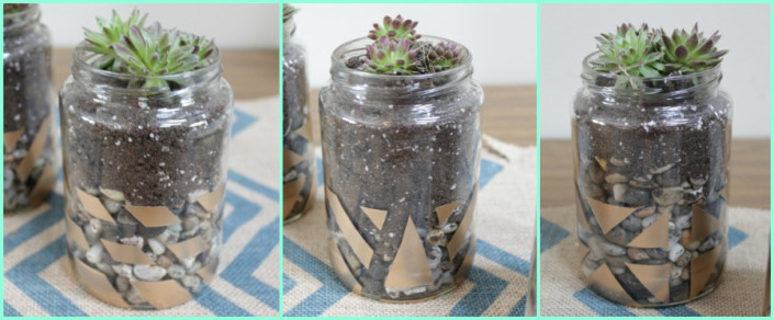 25 Ways to Use Succulents at The Everyday Home / www.everydayhomeblog.com