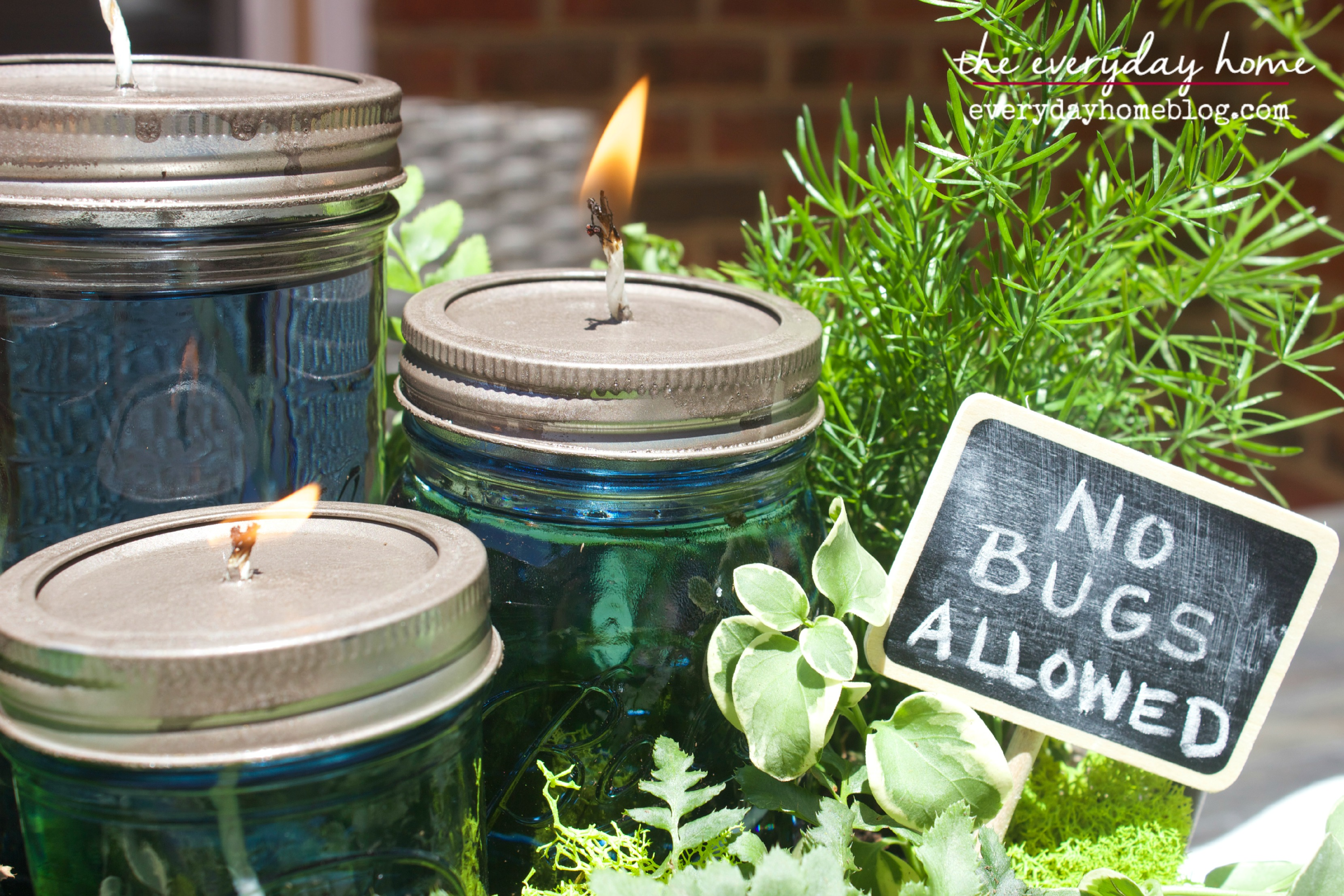 Diy Citronella Mason Jar Candles The Everyday Home