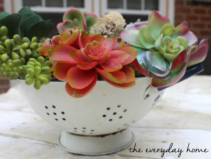 DIY Succulent Garden in a Vintage Blue and White Colander at The Everyday Home / www.everydayhomeblog.com