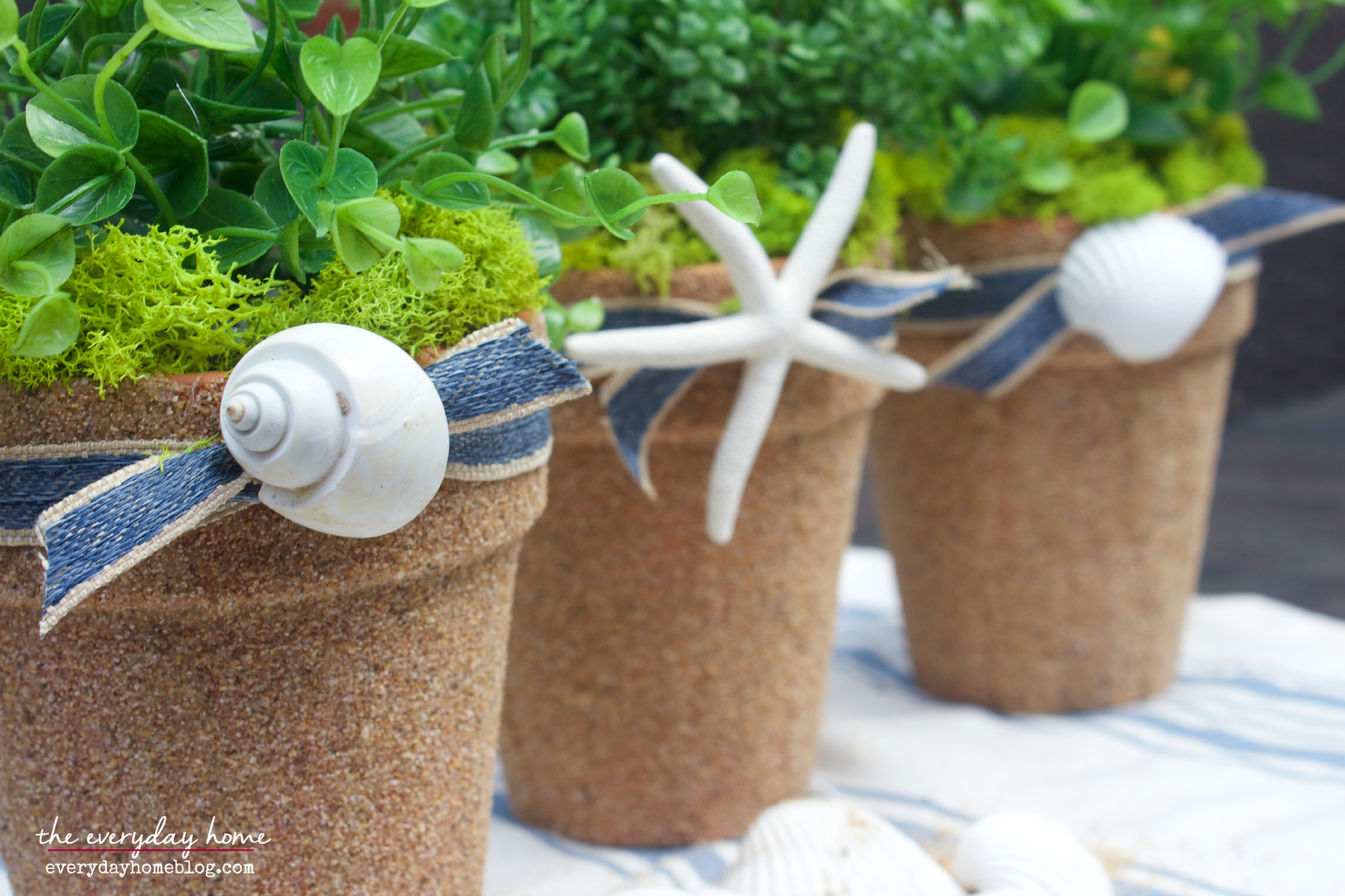 Make a Seashell Planter by The Everyday Home | www.everydayhomeblog.com