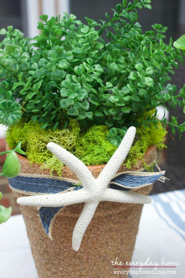 Seashell Planter by The Everyday Home | www.everydayhomeblog.com