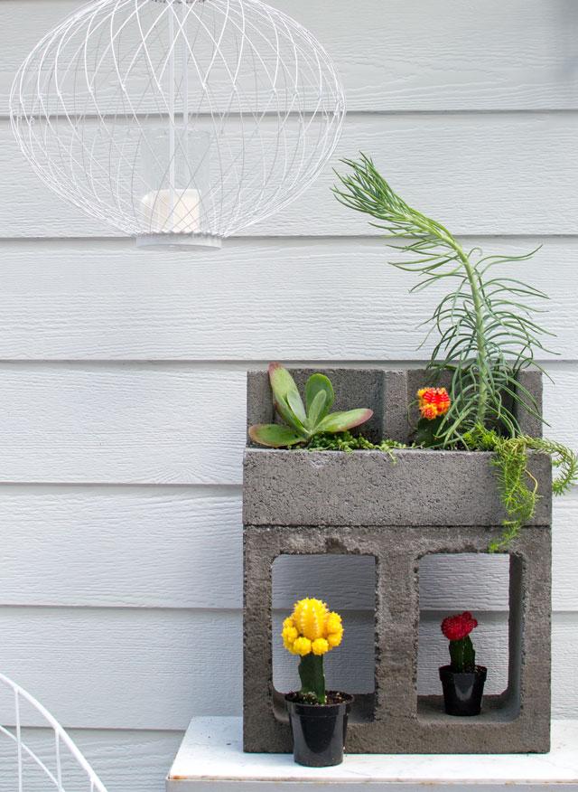 concrete-cacti-planter_2693