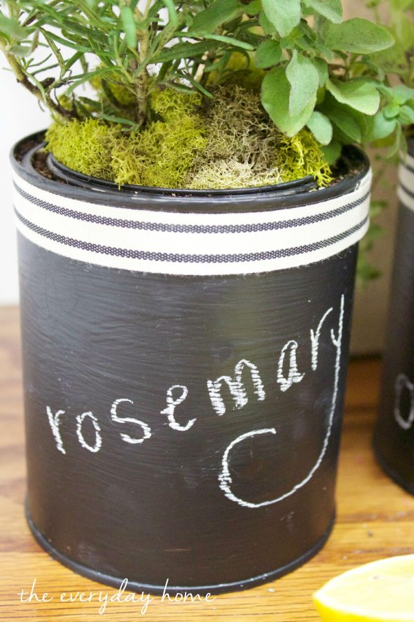 Paint Can Herb Pot | The Everyday Home |  www.everydayhomeblog.com