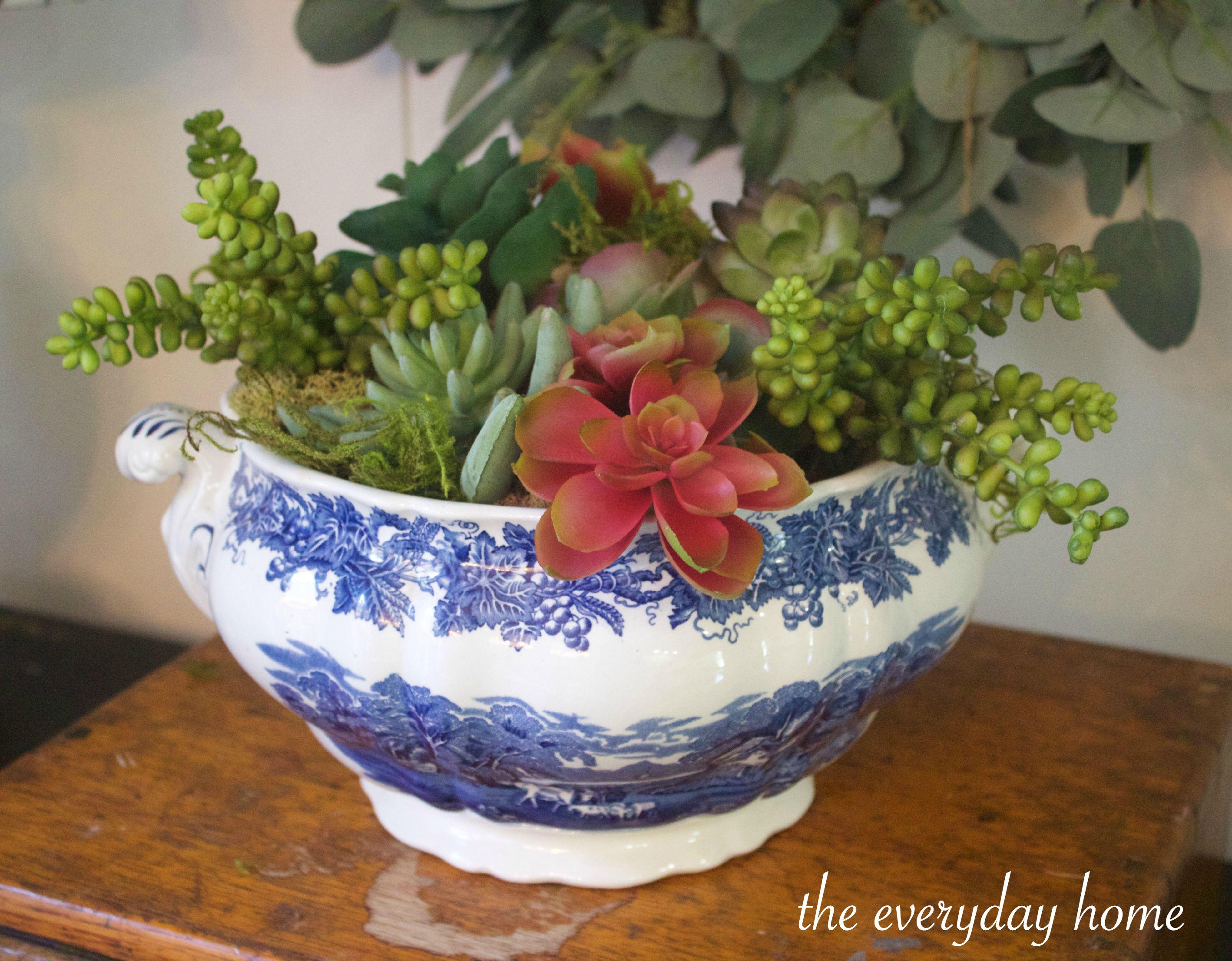 Blue Bowl of Succulents | The Everyday Home | www.everydayhomeblog.com
