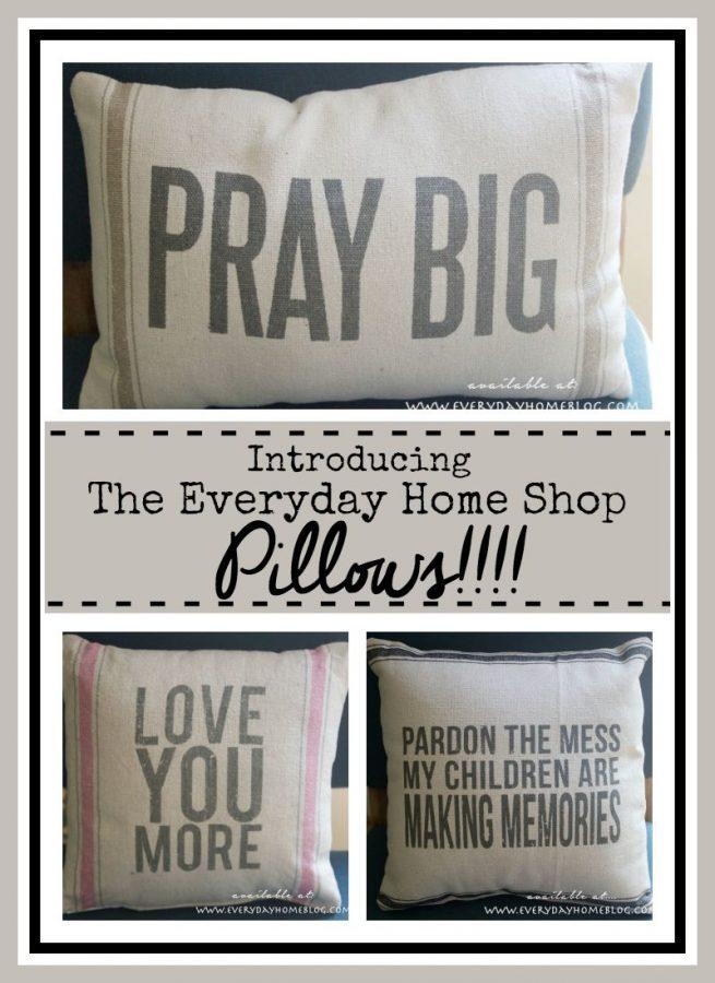 The Everyday Home Shop Pillows | The Everyday Home |  www.everydayhomeblog.com