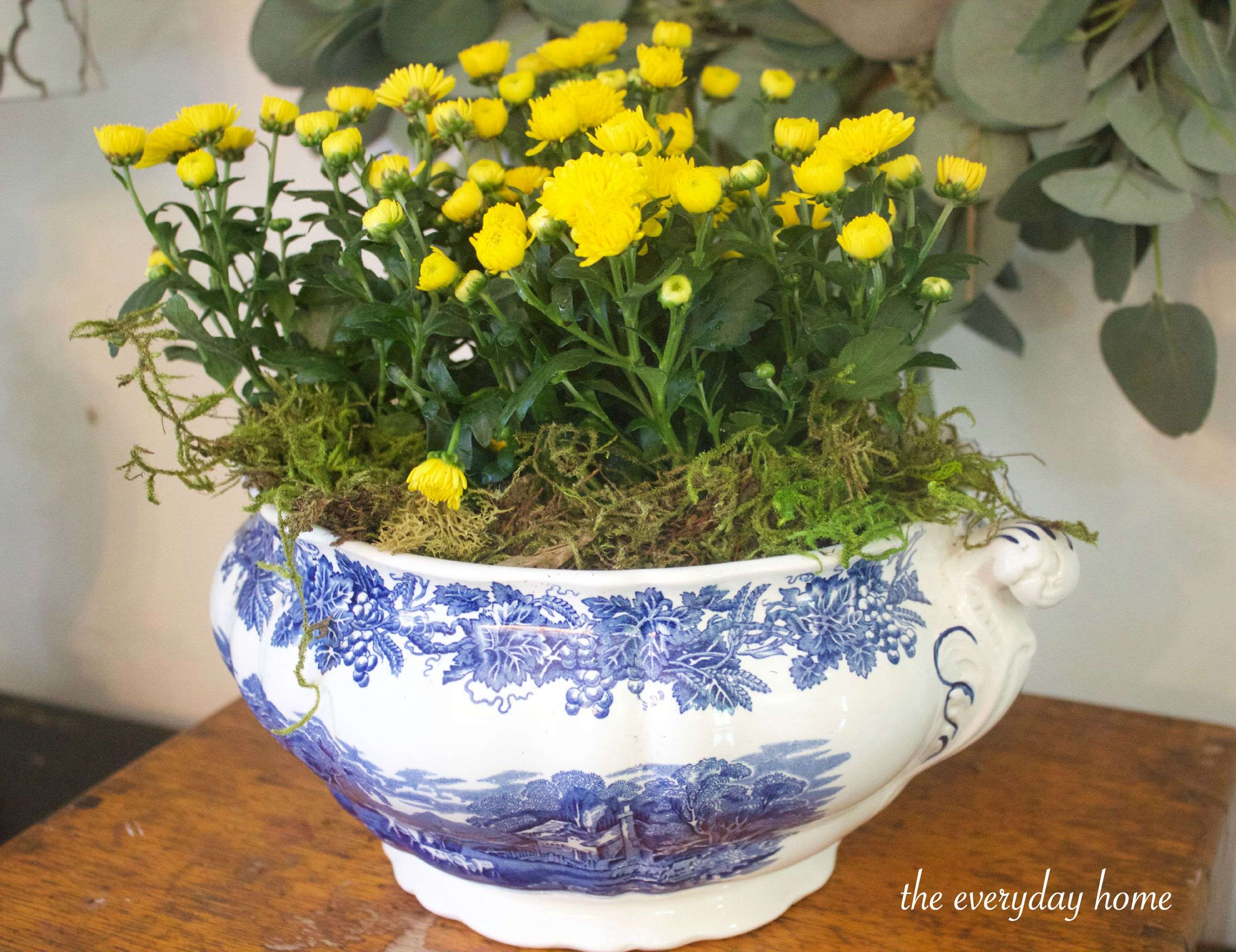 Yellow Mums in Blue Bowl The Everyday Home www.everydayhomeblog.com