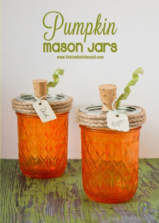 20+ Fall Themed Mason Jar Projects | The Everyday Home | www.everydayhomeblog.com