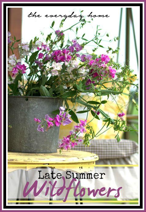 Late Summer Wildflowers   The Everyday Home   www.everydayhomeblog.com