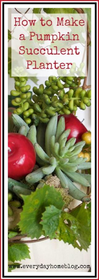 Pumpkin Succulent and Apple Planter | The Everyday Home | www.everydayhomeblog.com