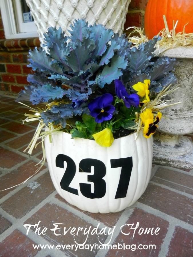 House Number Pumpkin Planter | The Everyday Home | www.everydayhomeblog.com