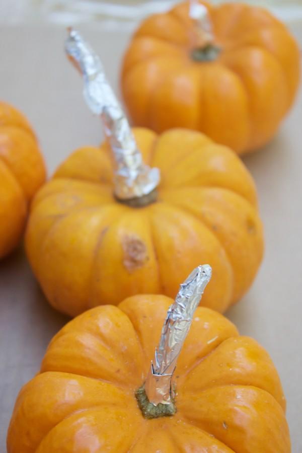 Protecting Pumpkin Stems | The Everyday Home | www.everydayhomeblog.com