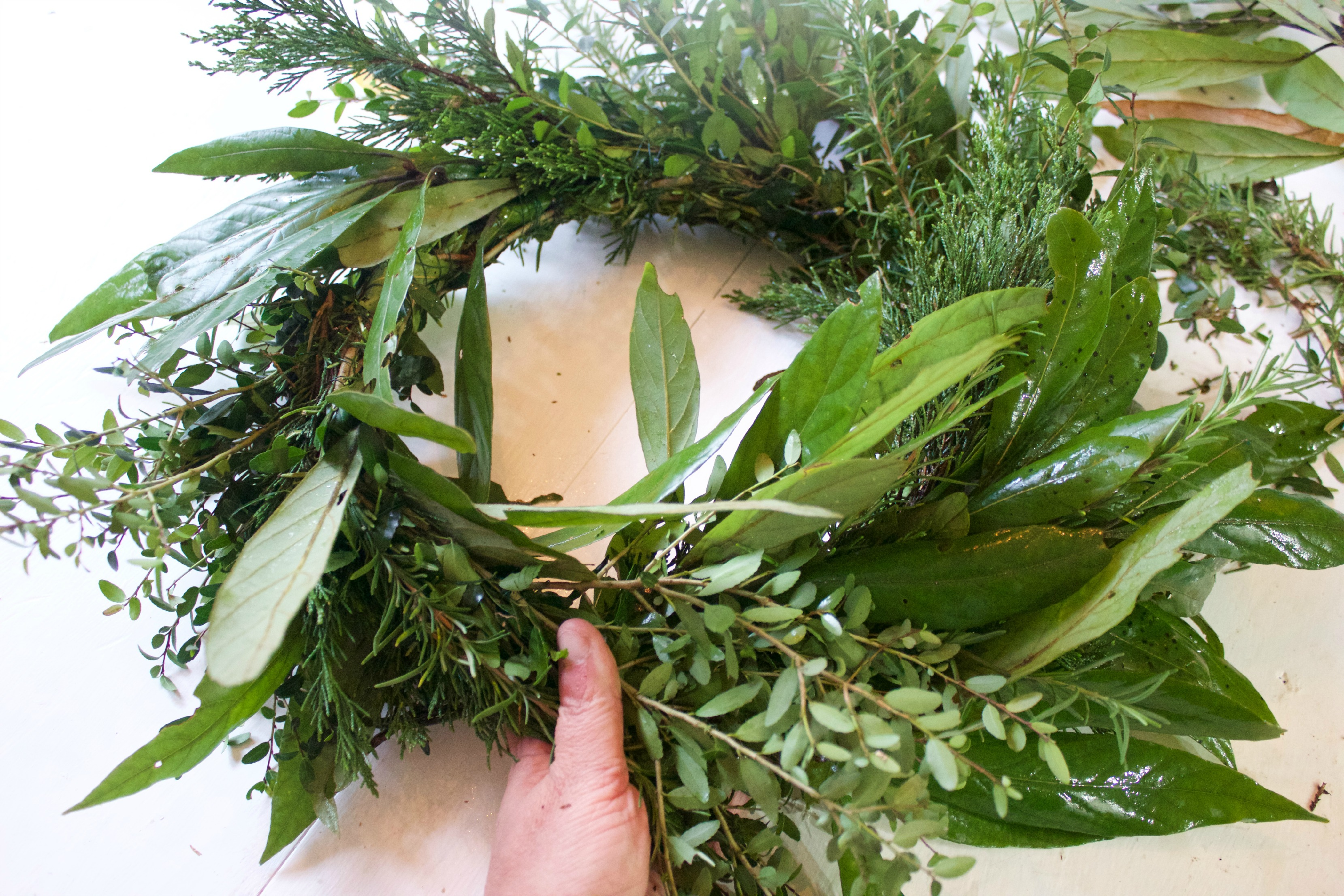 Forming the Evergreen Wreath |The Everyday Home | www.everydayhomeblog.com