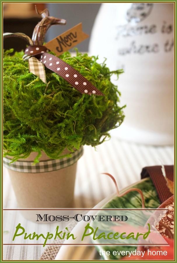 How to Make a Moss Covered Pumpkin Placecard | The Everyday Home | www.everydayhomeblog.com