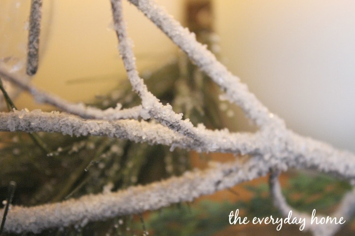 Winter-Branches-8
