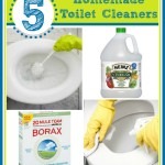 5 Homemade and Creative Ways to Clean a Toilet