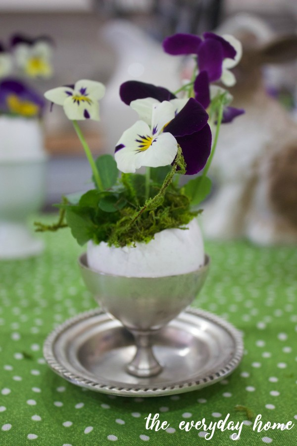 Eggcup Spring Planter | The Everyday Home Blog | www.everydayhomeblog.com