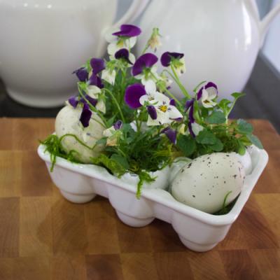 Eggshell Planter for Spring