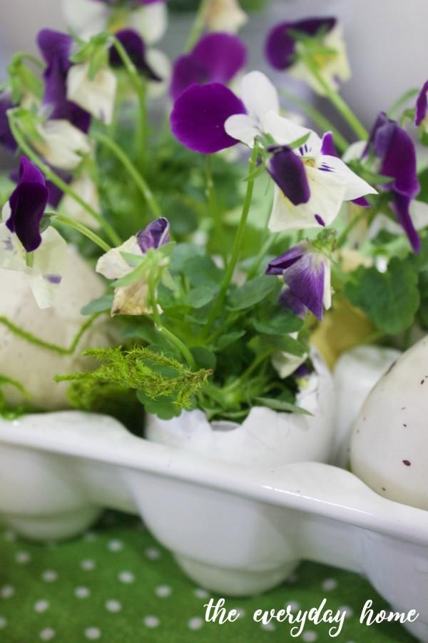 Eggshell Planters for Spring   The Everyday Home   www.everydayhomeblog.com