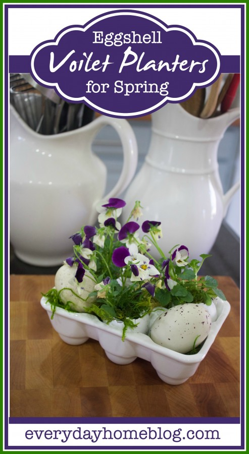 Eggshell Violet Planters | The Everyday Home Blog | www.everydayhomeblog.com