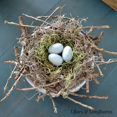 DIY Twiggy Bird Nest