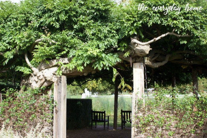Hever Castle Vines | The Everyday Home