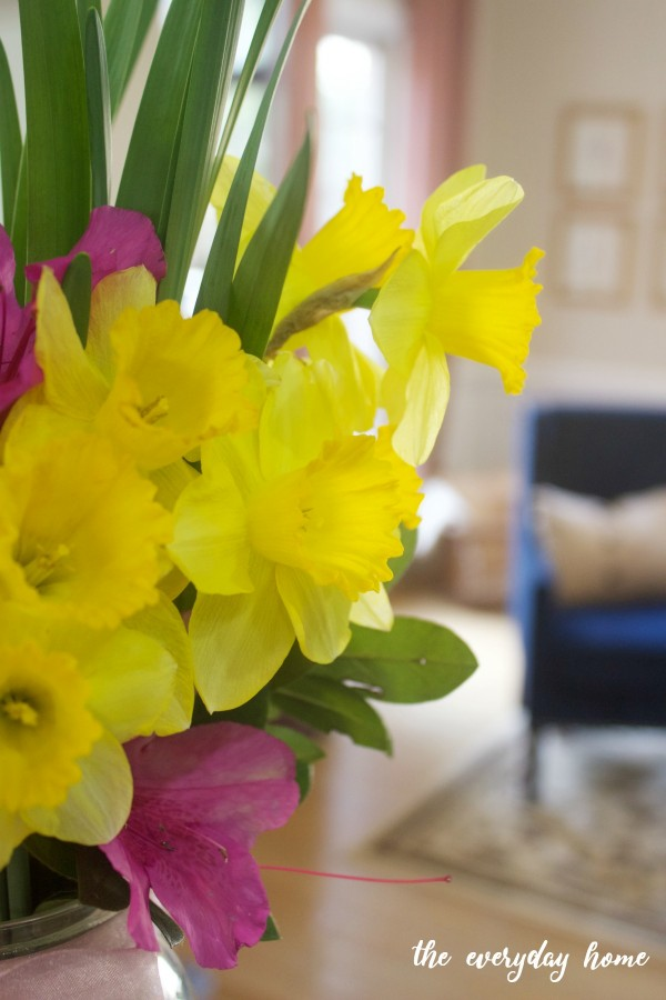 Spring Daffodils | The Everyday Home