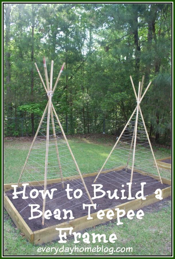 How to Build a Bean Teepee Frame | The Everyday Home