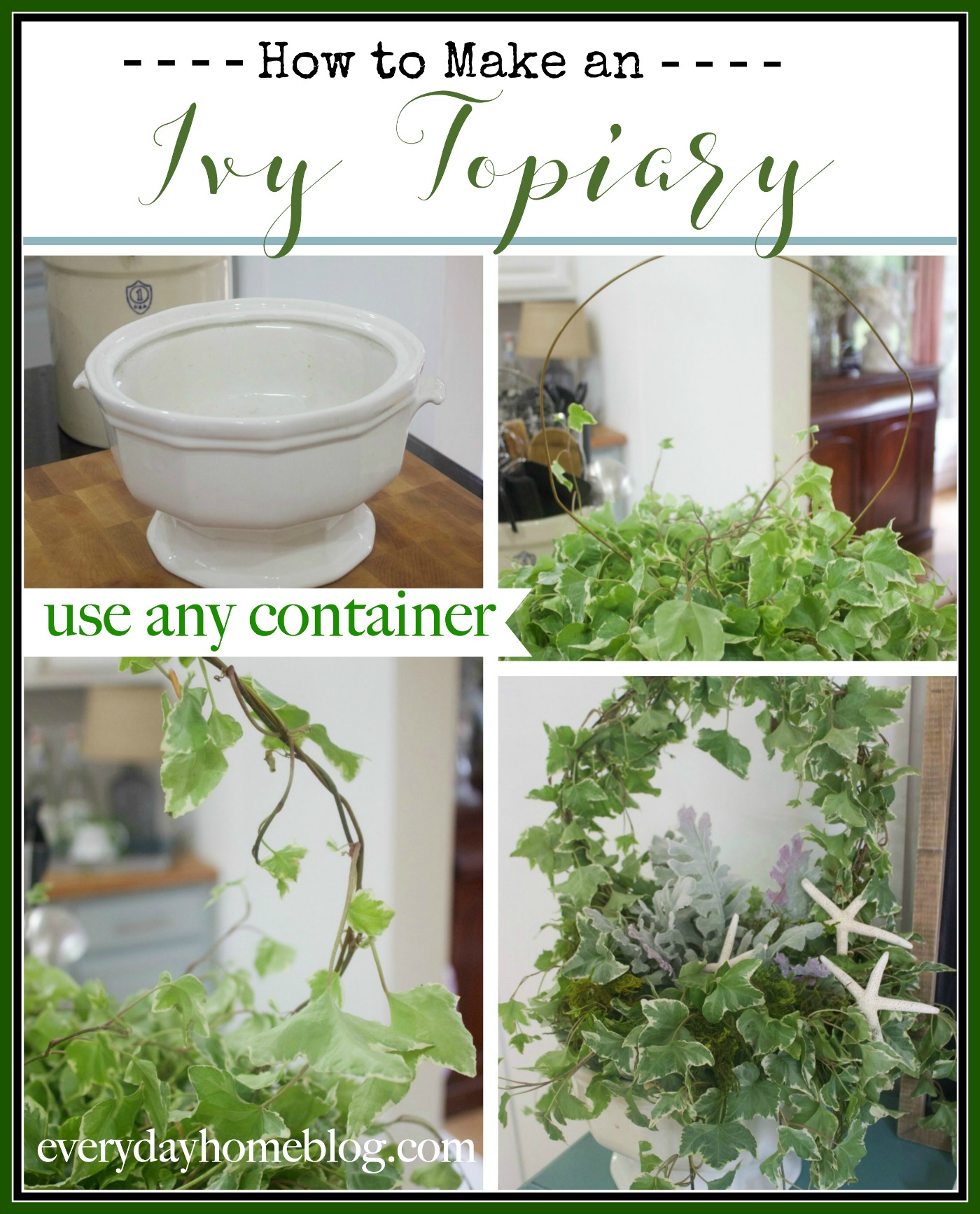 How to Make an Ivy Topiary   The Everyday Home Blog