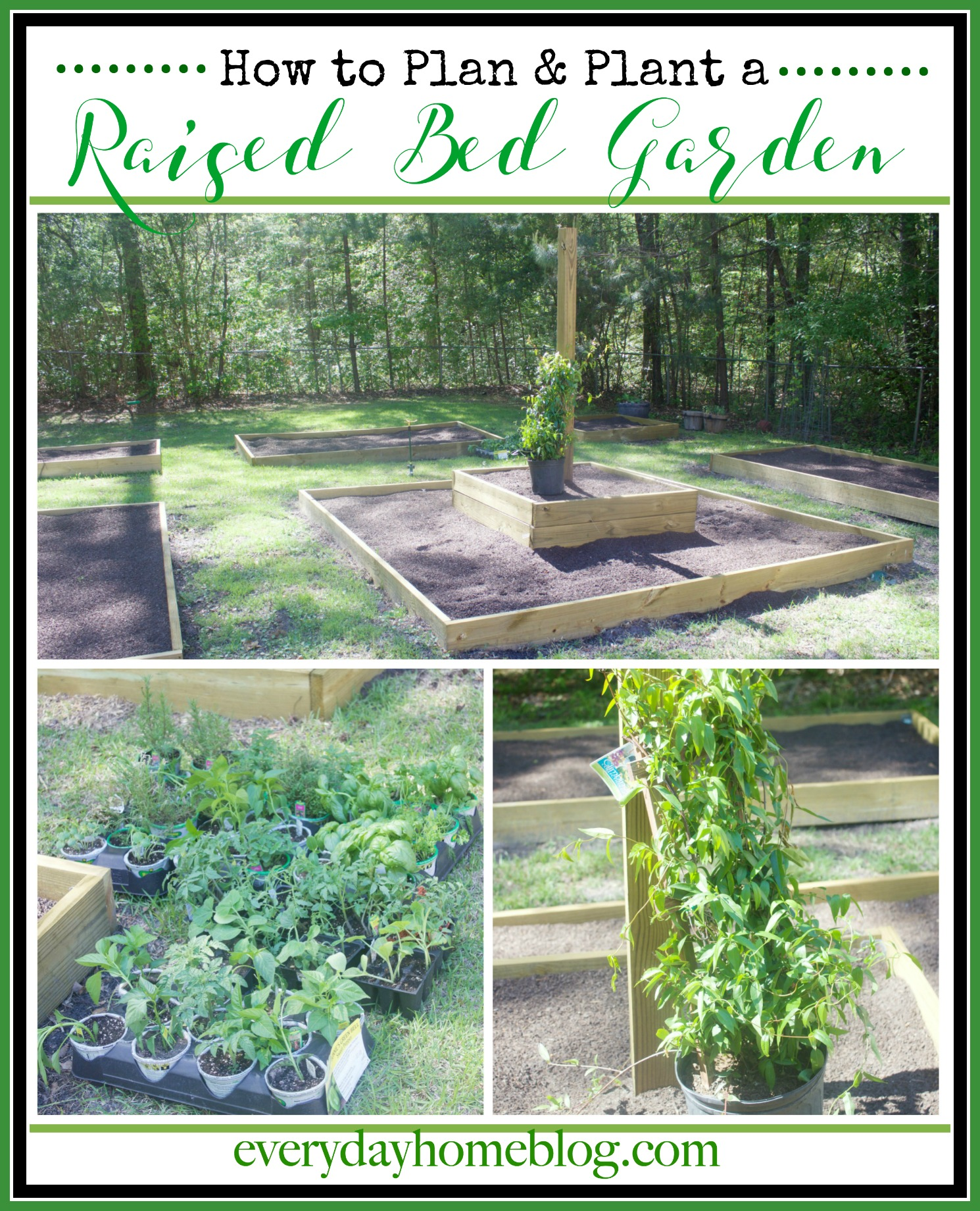 How to Plan & Plant a Raised Bed Garden | The Everyday Home