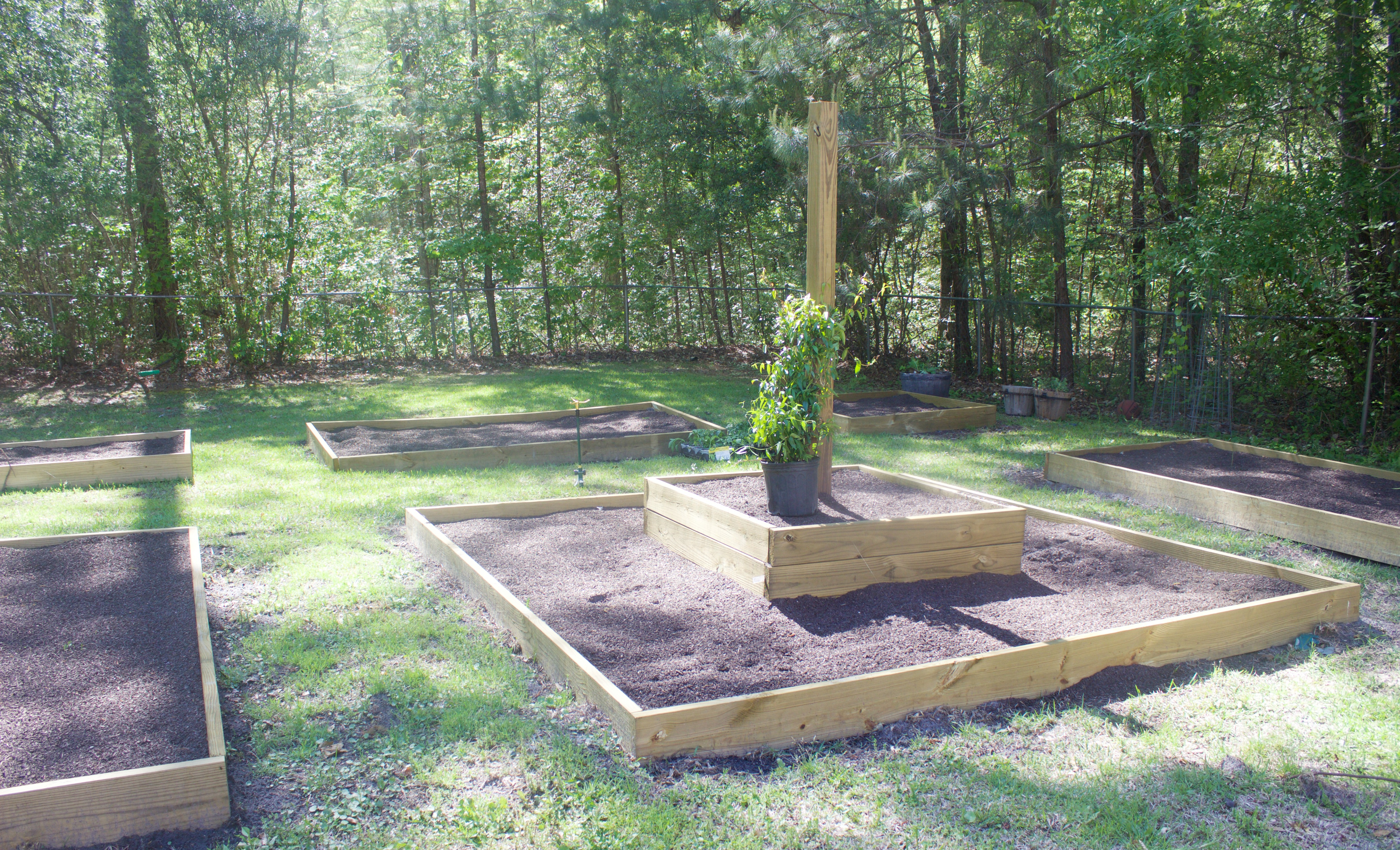 Raised Garden Beds | The Everyday Home