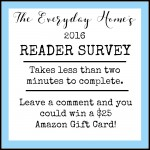The Everyday Home's 2016 Reader Survey