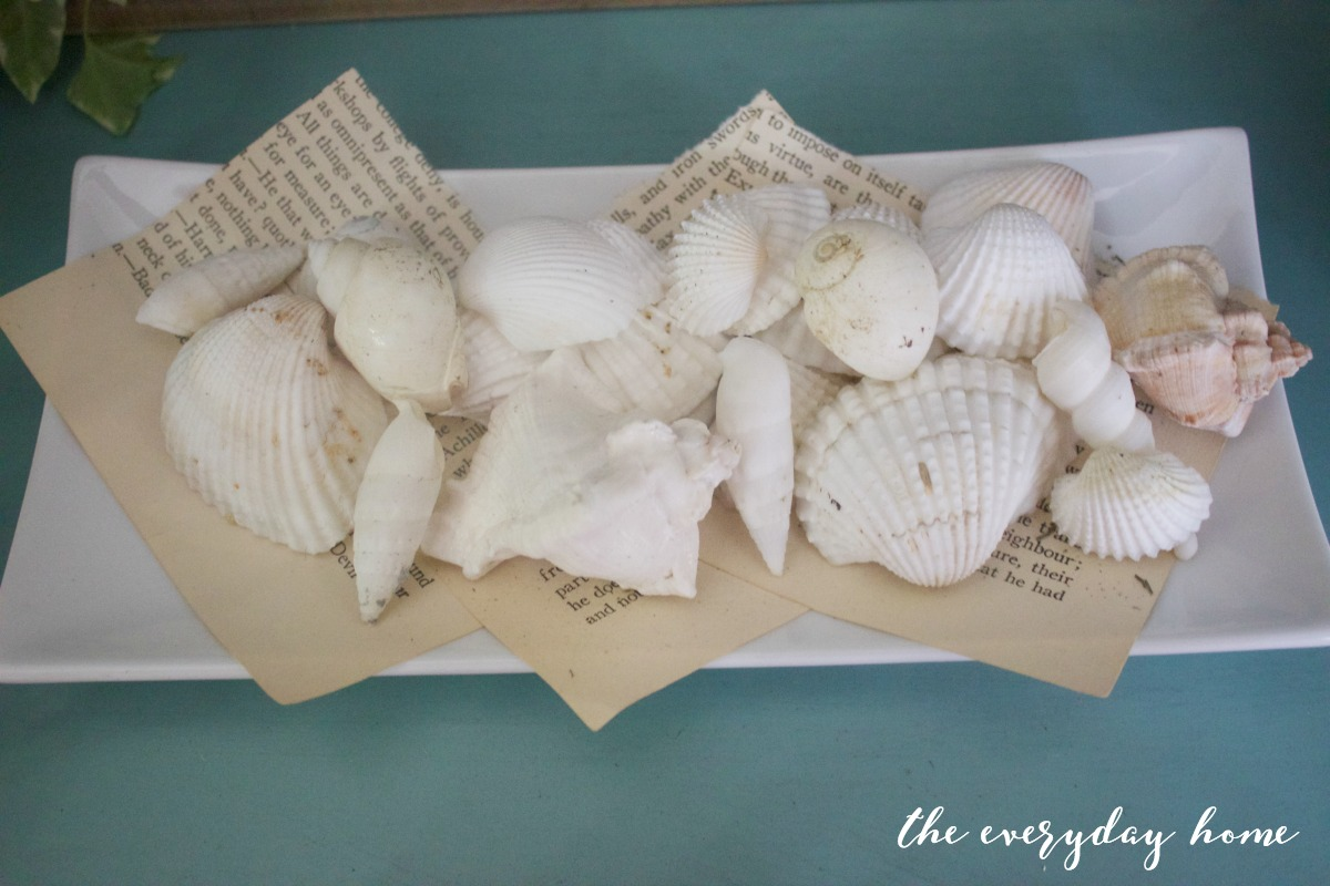 Shells on Vintage Book Pages   The Everyday Home