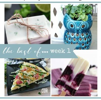 …the best of {week 1}