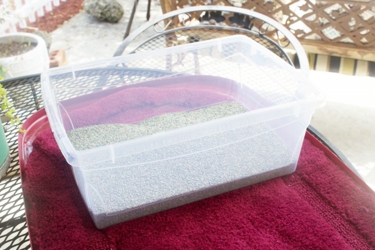 DIY LItter Box