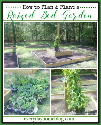 Planning and Planting a Raised Bed Garden | The Everyday Home