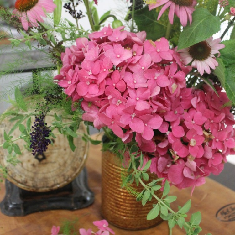 Summer Garden Blooms in a Rusty Can | The Everyday Home | everydayhomeblog.com