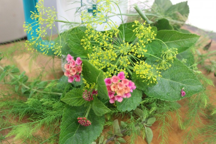 flowers from the garden | The Everyday Home